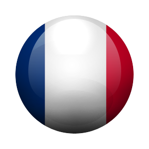 VPN French IP - Monthly